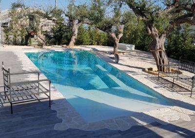 piscina-con-alberi